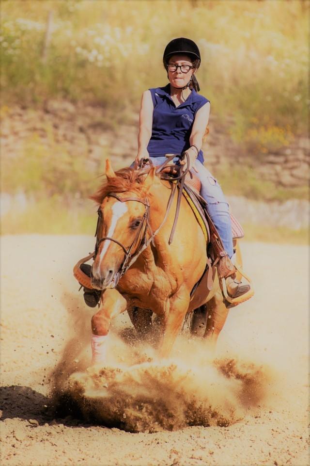 La contessa Quarter Horse