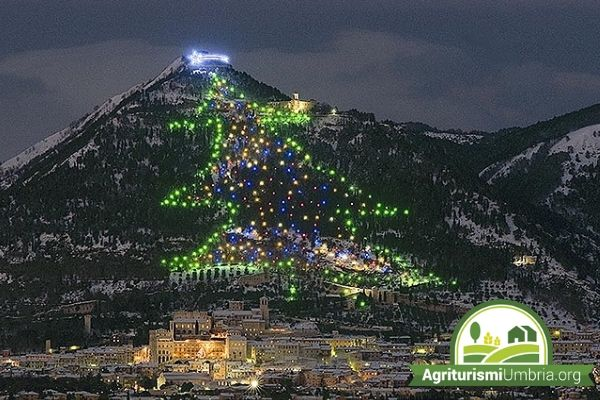 largest Christmas tree in the world gubbio